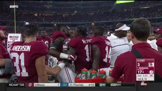 Bama Sideline Fight