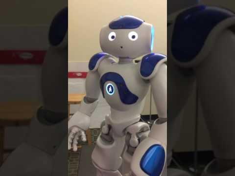 NAO Robot Program by Mila