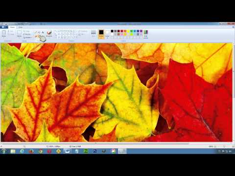 Setting Text Color in MS Word
