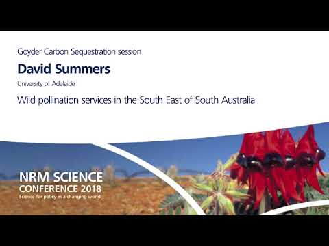 Day 1 - Goyder Carbon Sequestration - David Summers