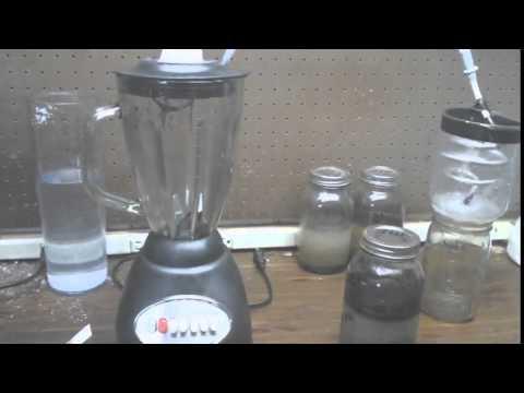 Graphene blender method test Day 7