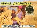 NDAMA JIGOSHILAGA UJUMBE WA LUBHINZA BY LWENGE STUDIO