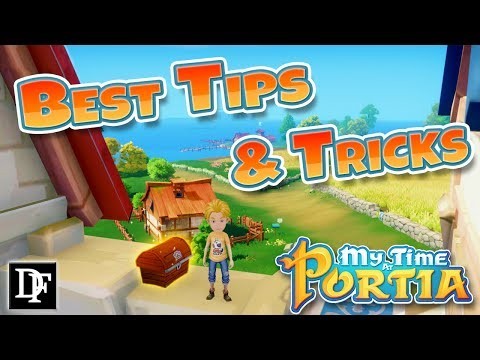 The Best Tips And Tricks For New Players! - My Time At Portia Beta