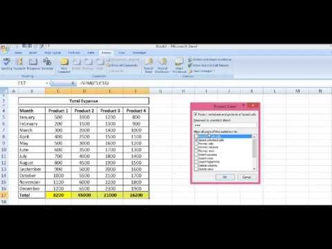 Excel 2007, 2010 : Protect Cells that Contain Formula in Excel