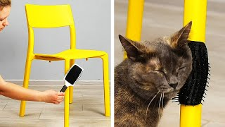 AMAZING HACKS FOR ANIMALS AND THEIR OWNERS || 5-Minute Recipes For You Pet