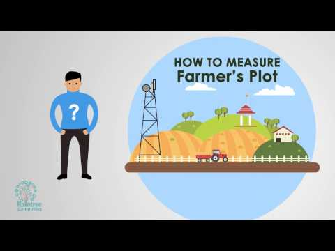 Infographic Animation - Sugar Cane Management