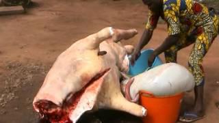 Au Bénin Célébration Mariage de Wassi et Maimounatou N°9