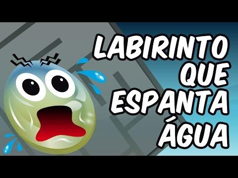 Labirinto que espanta água (experiência do labirinto hidrofóbico)
