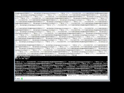 How to View a Text File in AIX