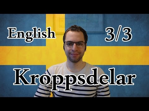 Learn Swedish | Body Parts 3/3 | Lesson 26