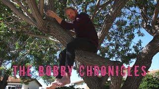 The Bobby Chronicles | David Lopez