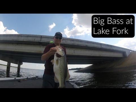 Big Bass at Lake Fork