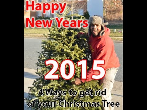 4 ways to get rid of a Christmas Tree