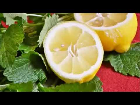 What Are the Benefits of Lemon Balm Tea