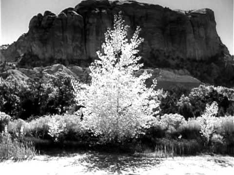 LAND OF ENCHANTMENT: SOUTHWEST USA - Georgia O'Keefe Artist New Mexico Native American Documentary