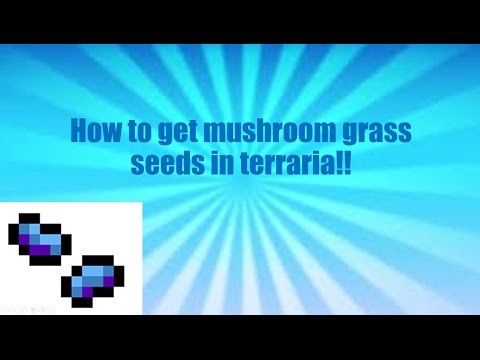 how to get mushroom grass seeds in terraria