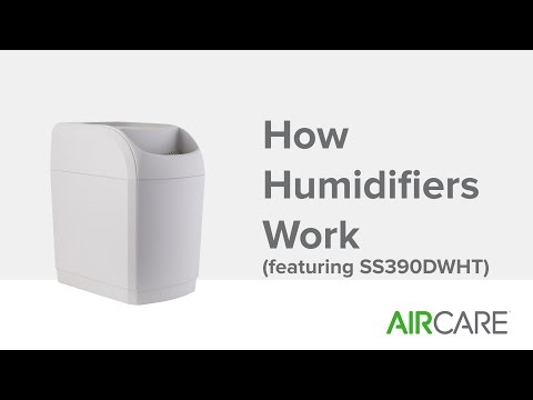 How Humidifiers Work (featuring SS390DWHT)