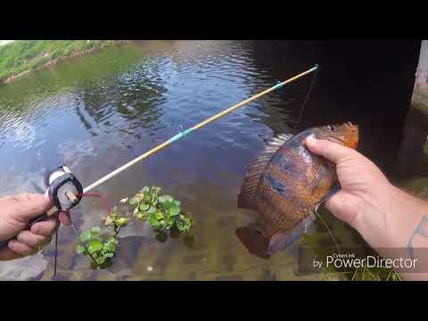Homemade fishing rod and reel