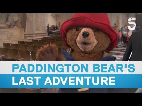 Paddington bear embarks on one last adventure - 5 News
