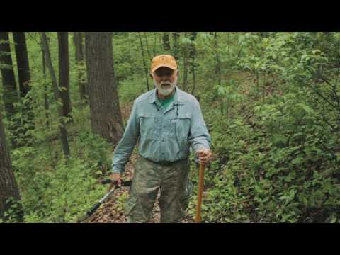 Expert Opinions on Tick Bite Prevention on the Appalachian Trail