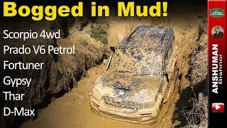 Mud Offroading- Prado V6 | Scorpio 4wd | Fortuner | Thar | Gypsy | D-max | Endeavour