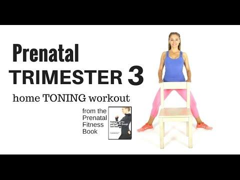 PREGNANCY EXERCISE - 3rd Trimester  Prenatal  Workout