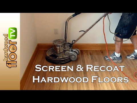 Screen Hardwood Floors -  Buff & Recoat