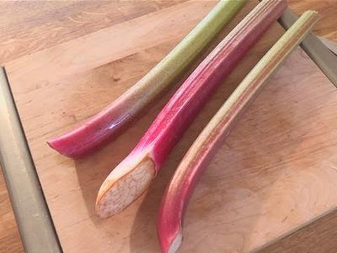 How To Freeze Your Rhubarb