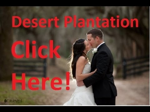 Desert Plantation - Affordable Louisiana Wedding Packages by Desert Plantation