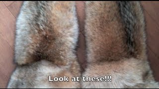 How to make fur mittens!