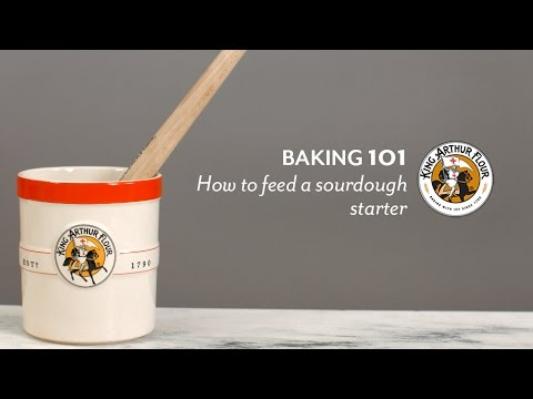 How to feed a sourdough starter