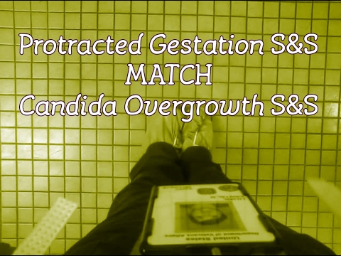 Protracted Gestation Cryptic Pregnancy S&S Match Candida Overgrowth S&S