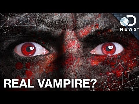 The True Origin of Zombies, Vampires, and Werewolves