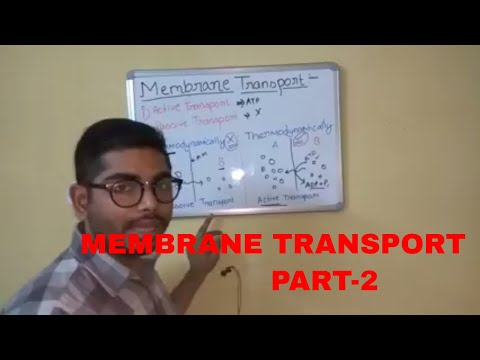 Membrane transport part 2 (Active and Passive Transport)