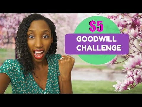 $5 Goodwill Challenge | Spring 2018