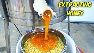 Extracting Honey - Honey Harvest Part 2