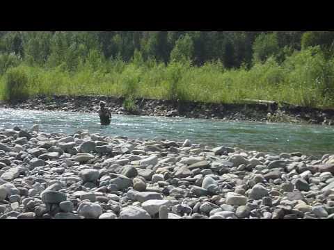 Bull Trout Fly Fishing, Western Canada