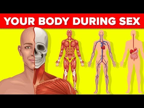 Xxx Mp4 What Happens To Your Body While You Are Having Sex 3gp Sex