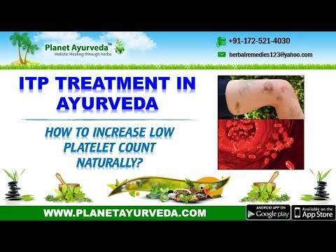 ITP Treatment in Ayurveda | Increase Low Platelet Count Naturally