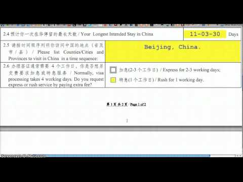 Chinese VISA Application Form