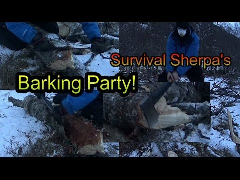 Going at Survival Sherpa's Barking Party (~seasoned birch)