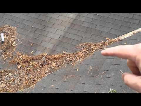 Roof Warning Signs - Leaves & Tree Debris