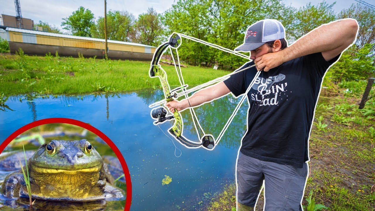 BULLFROG Bowfishing in TINY CREEK!!! (Lucky Shot) - Catch Clean Cook