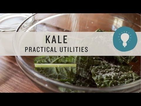 Superfoods - Kale Practical Utilities
