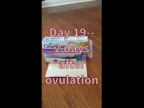 2 days after ovulation