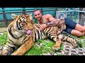 When Your Best Friends Are Animals Funny Compilation