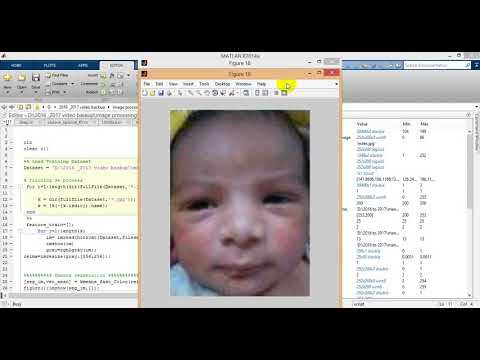 Domain Specific Learning for Newborn Face Recognition  ||ieee 2017 matlab projects at bangalore
