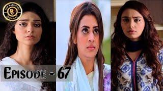 Haal-e-Dil - Episode 67 | Top Pakistani Dramas | ARY Zindagi
