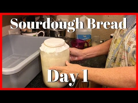 How to Make Sourdough Bread Day 1 | Sourdough Starter | AldermanFarms