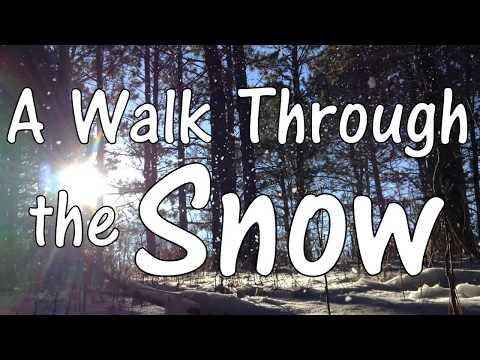 A Walk Through the Snow